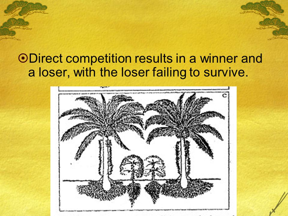  Direct competition results in a winner and a loser, with the loser failing to survive.