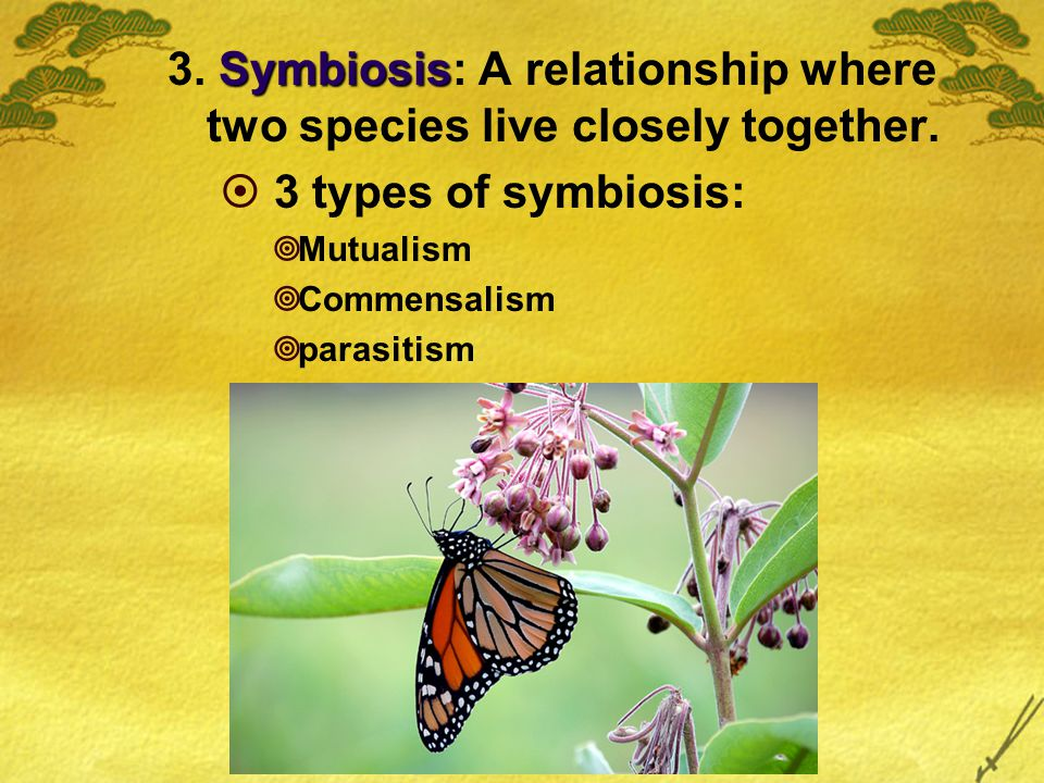 Symbiosis 3. Symbiosis: A relationship where two species live closely together.  3 types of symbiosis:  Mutualism  Commensalism  parasitism