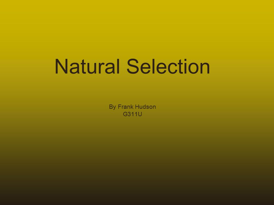 Natural Selection By Frank Hudson G311U