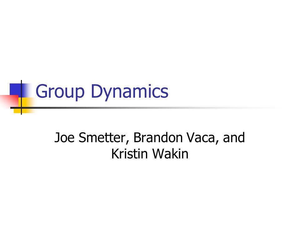 Group Dynamics Joe Smetter, Brandon Vaca, and Kristin Wakin