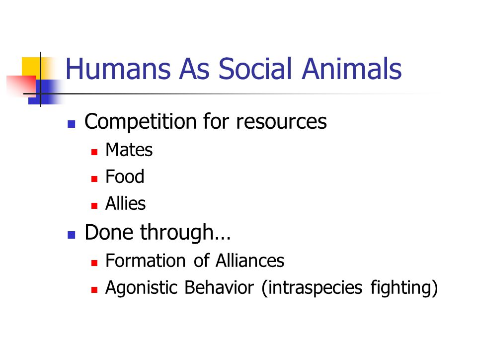 Humans As Social Animals Competition for resources Mates Food Allies Done through… Formation of Alliances Agonistic Behavior (intraspecies fighting)