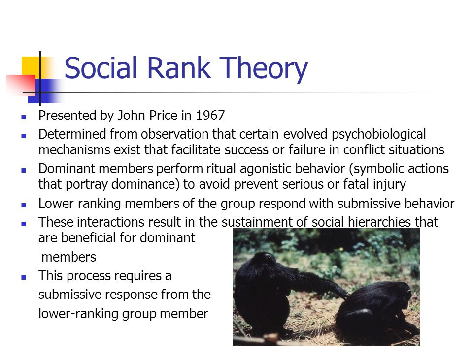 Social Rank Theory Presented by John Price in 1967 Determined from observation that certain evolved psychobiological mechanisms exist that facilitate success or failure in conflict situations Dominant members perform ritual agonistic behavior (symbolic actions that portray dominance) to avoid prevent serious or fatal injury Lower ranking members of the group respond with submissive behavior These interactions result in the sustainment of social hierarchies that are beneficial for dominant members This process requires a submissive response from the lower-ranking group member