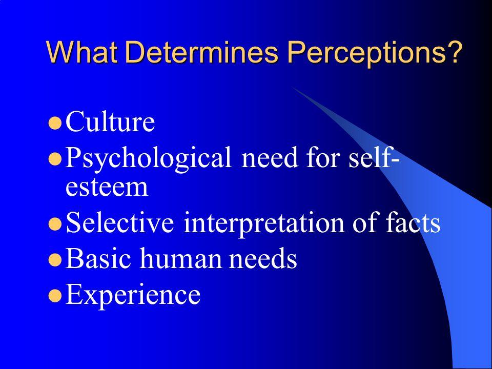 What Determines Perceptions.