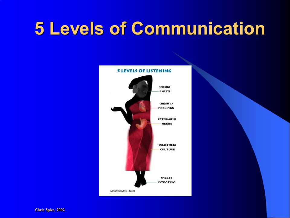 5 Levels of Communication Chris Spies, 2002