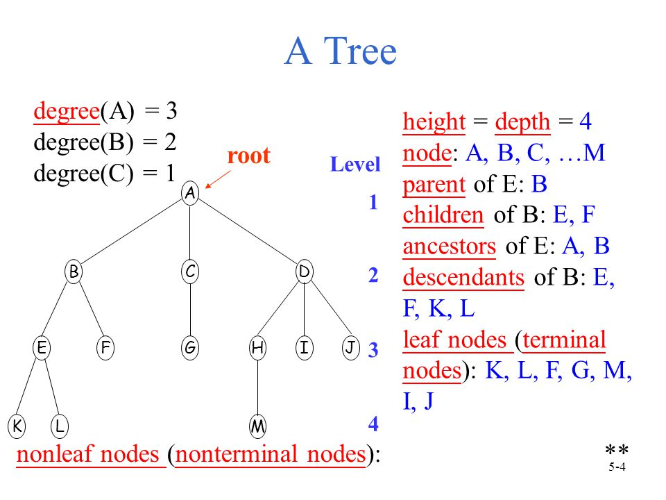 A Tree A BCD EFGHIJ KLM Level 1 2 3 4 root degree(A) = 3 degree(B) = 2 degree(C) = 1 nonleaf nodes (nonterminal nodes): ** height = depth = 4 node: A, B, C, …M parent of E: B children of B: E, F ancestors of E: A, B descendants of B: E, F, K, L leaf nodes (terminal nodes): K, L, F, G, M, I, J 5-4
