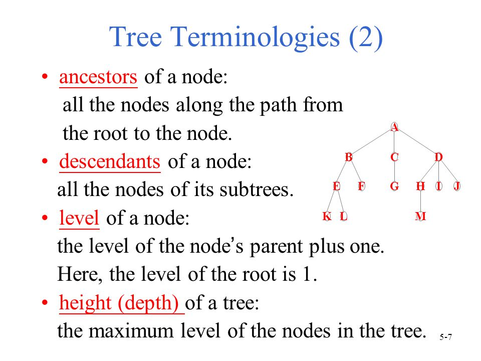 Tree Terminologies (2) ancestors of a node: all the nodes along the path from the root to the node.