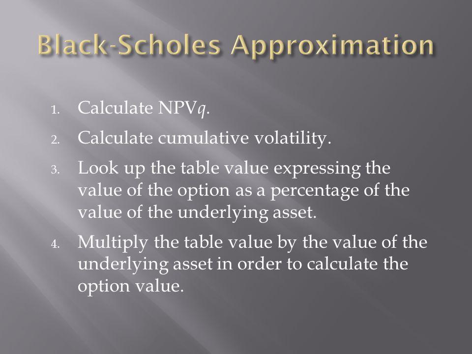1. Calculate NPV q. 2. Calculate cumulative volatility.