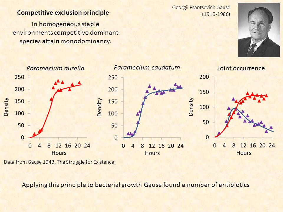 Competitive exclusion principle Georgii Frantsevich Gause (1910-1986) In homogeneous stable environments competitive dominant species attain monodominancy.