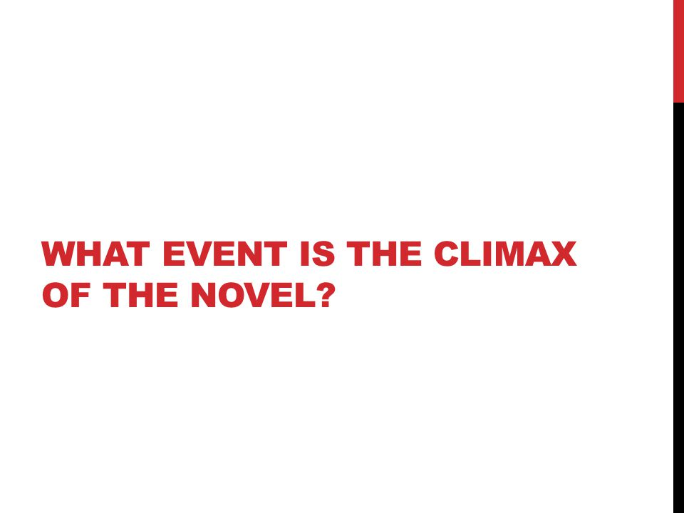 WHAT EVENT IS THE CLIMAX OF THE NOVEL?