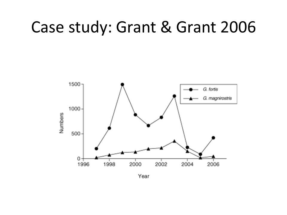 Case study: Grant & Grant 2006