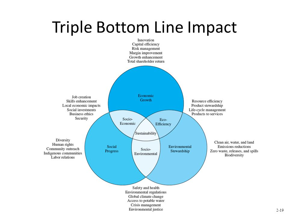 Triple Bottom Line Impact 2-19