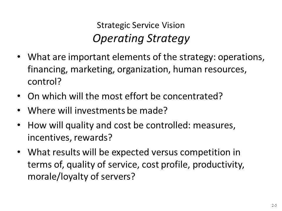 Strategic Service Vision Operating Strategy What are important elements of the strategy: operations, financing, marketing, organization, human resources, control.