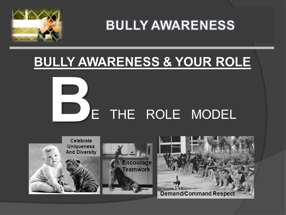 BULLY AWARENESS & YOUR ROLE B E THE ROLE MODEL Encourage Teamwork Celebrate Uniqueness And Diversity Demand/Command Respect