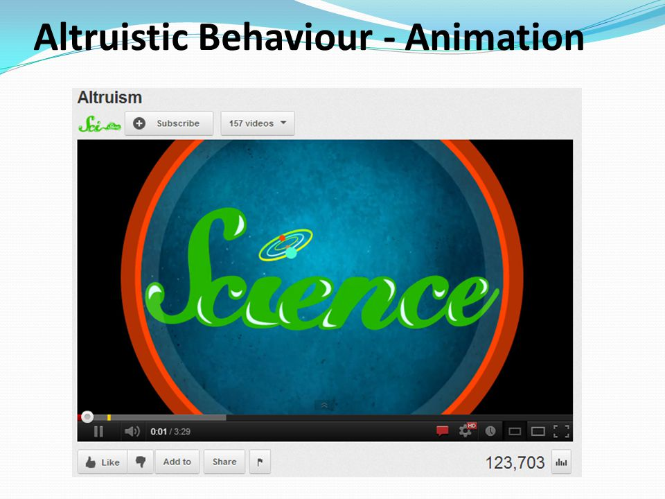 Altruistic Behaviour - Animation