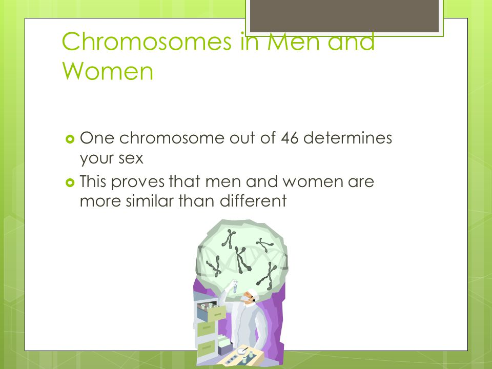 Chromosomes in Men and Women  One chromosome out of 46 determines your sex  This proves that men and women are more similar than different