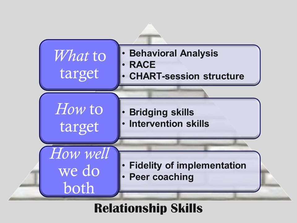 Behavioral Analysis RACE CHART-session structure What to target Bridging skills Intervention skills How to target Fidelity of implementation Peer coac