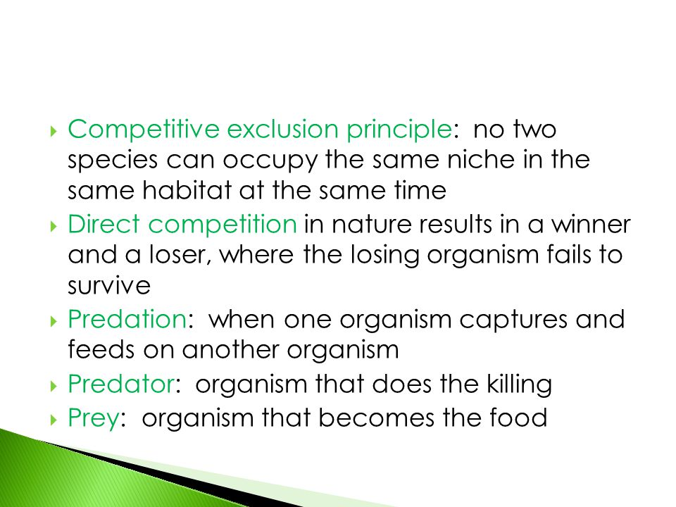  Competitive exclusion principle: no two species can occupy the same niche in the same habitat at the same time  Direct competition in nature result