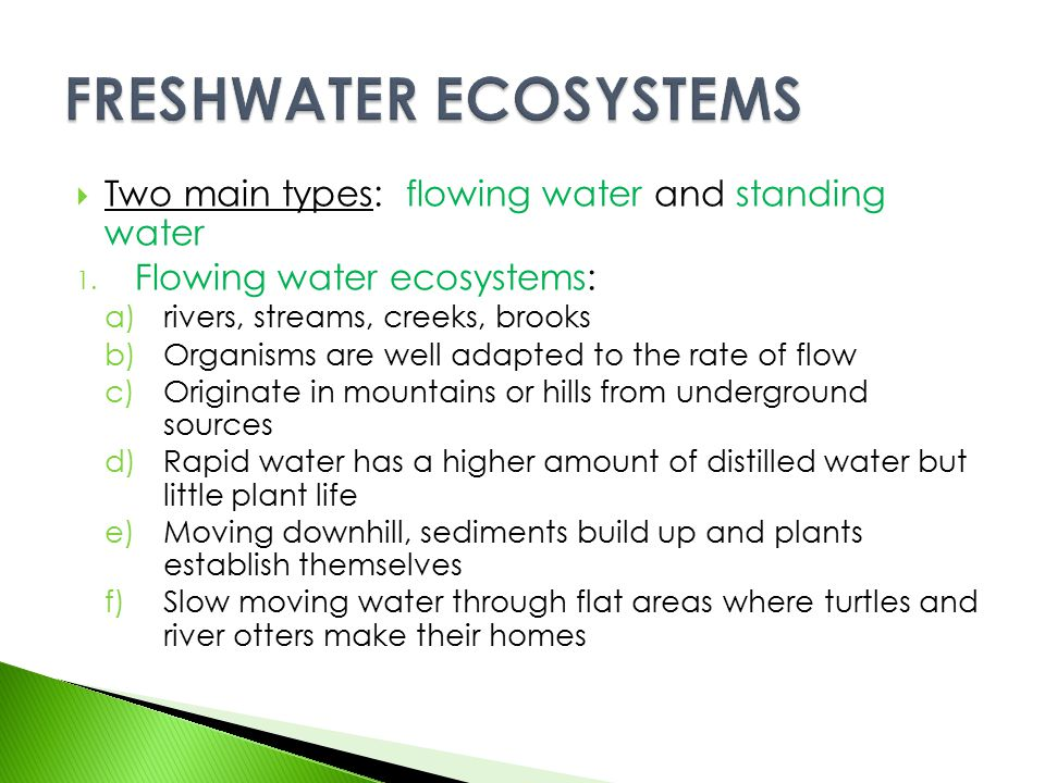  Two main types: flowing water and standing water 1. Flowing water ecosystems: a)rivers, streams, creeks, brooks b)Organisms are well adapted to the