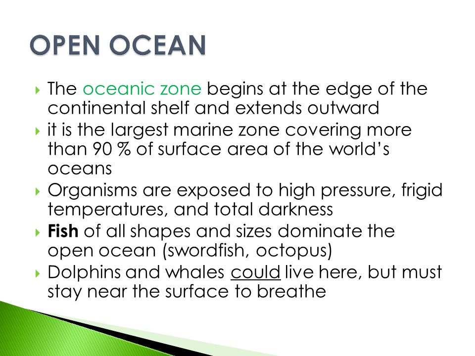  The oceanic zone begins at the edge of the continental shelf and extends outward  it is the largest marine zone covering more than 90 % of surface