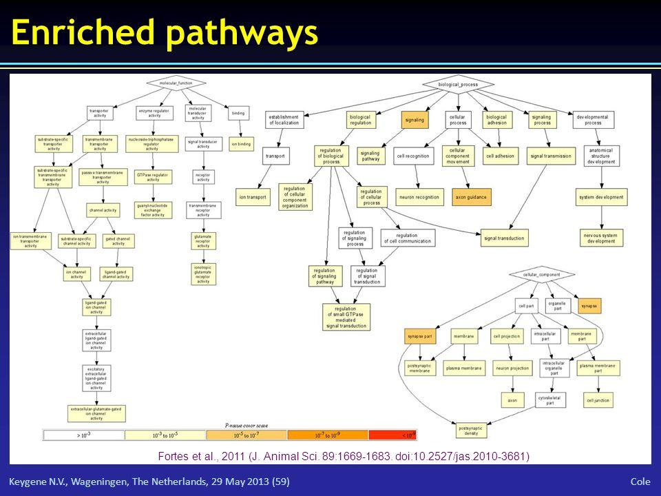 Keygene N.V., Wageningen, The Netherlands, 29 May 2013 (59) Cole Enriched pathways Fortes et al., 2011 (J.