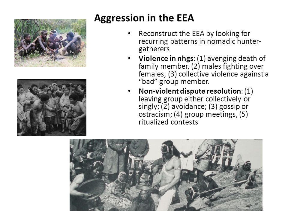 Aggression in the EEA Reconstruct the EEA by looking for recurring patterns in nomadic hunter- gatherers Violence in nhgs: (1) avenging death of family member, (2) males fighting over females, (3) collective violence against a bad group member.