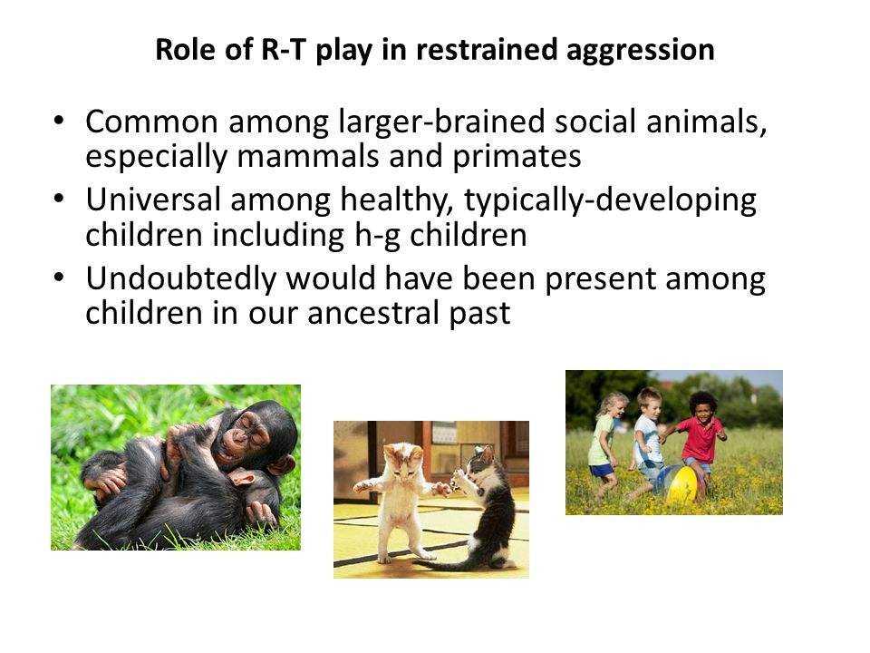 Role of R-T play in restrained aggression Common among larger-brained social animals, especially mammals and primates Universal among healthy, typically-developing children including h-g children Undoubtedly would have been present among children in our ancestral past