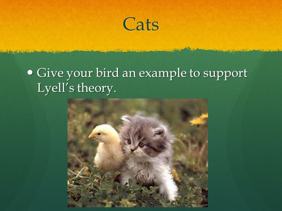 Cats Give your bird an example to support Lyell's theory. Give your bird an example to support Lyell's theory.