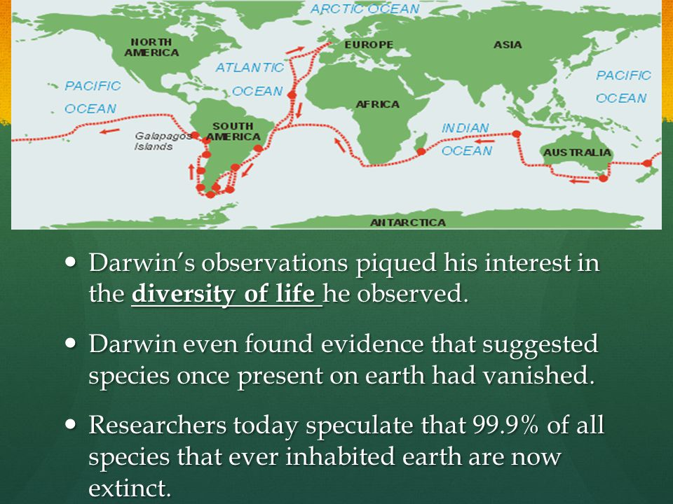 Darwin's observations piqued his interest in the diversity of life he observed. Darwin's observations piqued his interest in the diversity of life he