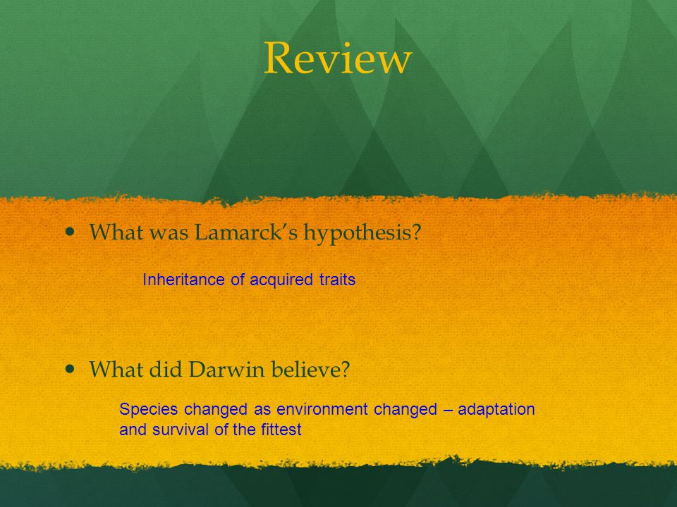 Review What was Lamarck's hypothesis? What did Darwin believe? Inheritance of acquired traits Species changed as environment changed – adaptation and