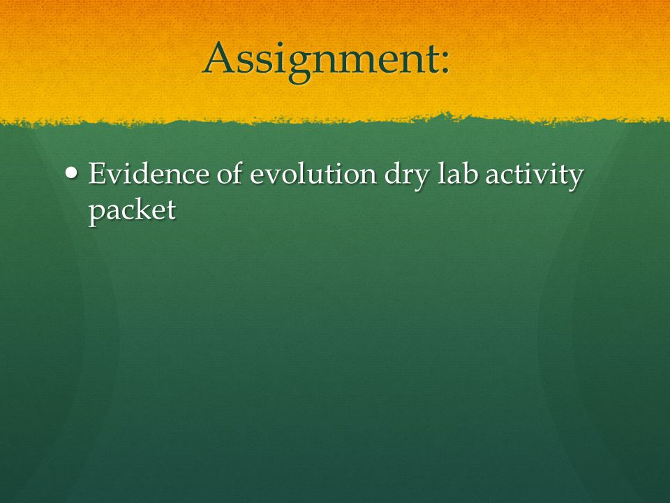 Assignment: Evidence of evolution dry lab activity packet Evidence of evolution dry lab activity packet