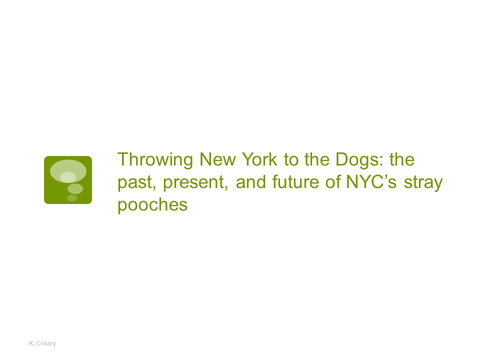 Throwing New York to the Dogs: the past, present, and future of NYC's stray pooches K. Creary