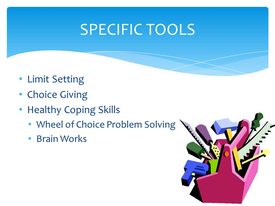 Limit Setting Choice Giving Healthy Coping Skills Wheel of Choice Problem Solving Brain Works SPECIFIC TOOLS