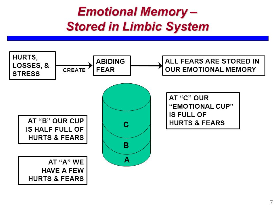 7 Emotional Memory – Stored in Limbic System HURTS, LOSSES, & STRESS ALL FEARS ARE STORED IN OUR EMOTIONAL MEMORY AT C OUR EMOTIONAL CUP IS FULL OF HURTS & FEARS C B A ABIDING FEAR CREATE AT A WE HAVE A FEW HURTS & FEARS AT B OUR CUP IS HALF FULL OF HURTS & FEARS