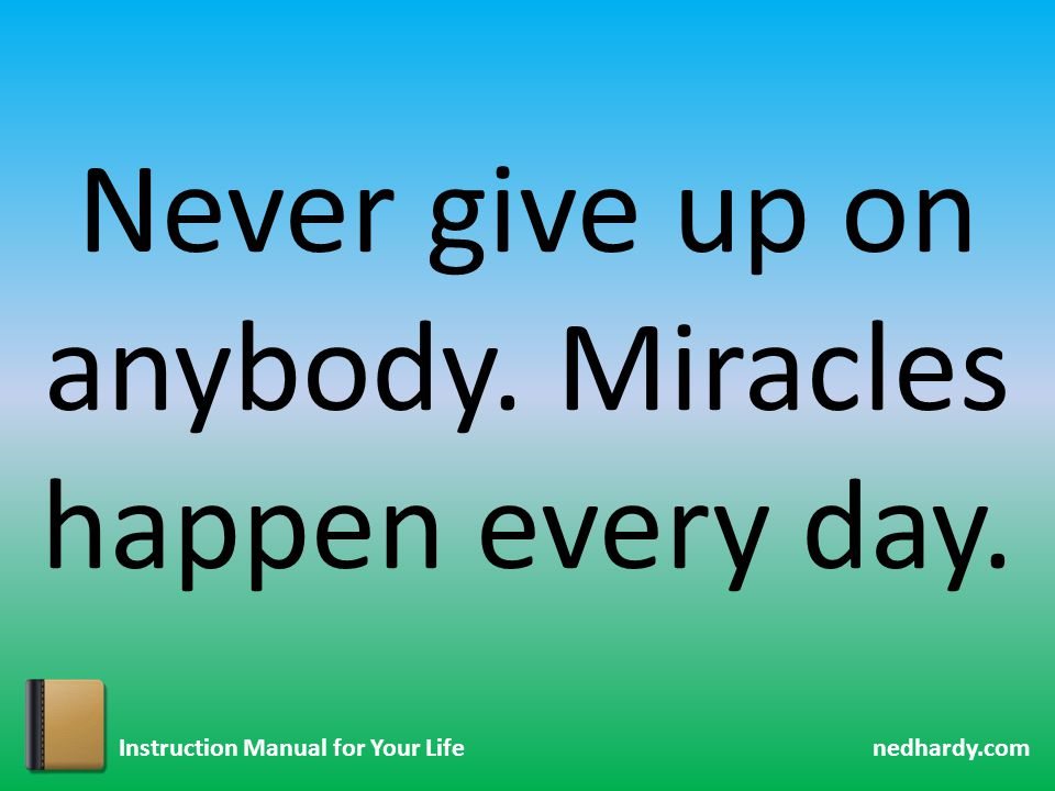 nedhardy.com Instruction Manual for Your Life Never give up on anybody. Miracles happen every day.