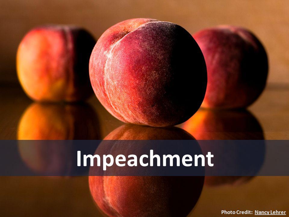 Impeachment Photo Credit: Nancy LehrerNancy Lehrer