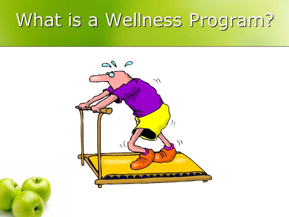 What is a Wellness Program