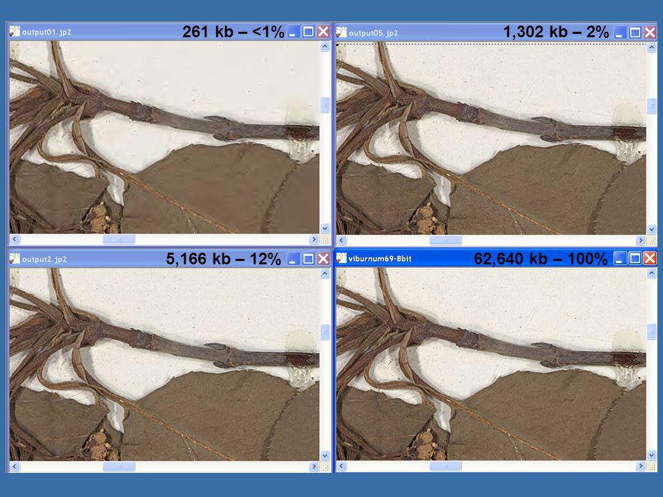 HERBIS images 261 kb – <1%1,302 kb – 2% 5,166 kb – 12%62,640 kb – 100%