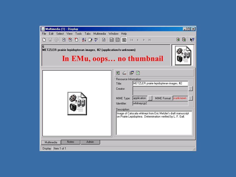 JP2 – no thumbnail In EMu, oops… no thumbnail