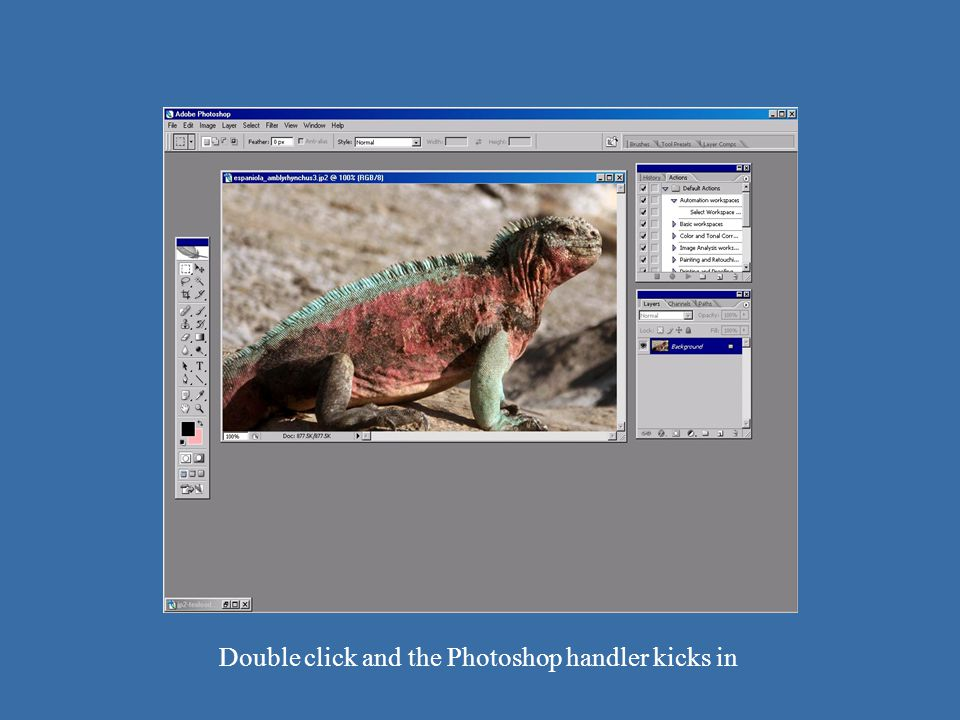 JP2 – Photoshop opens Double click and the Photoshop handler kicks in