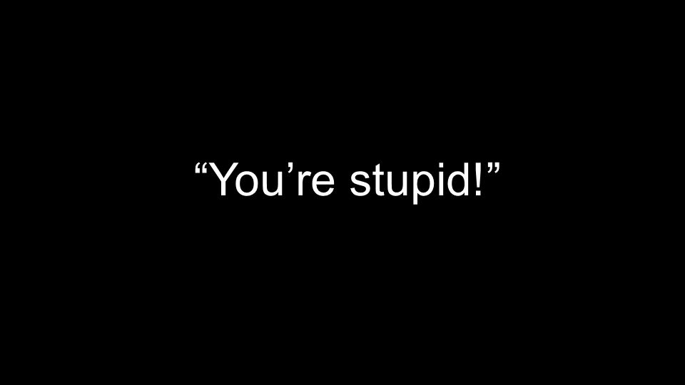 You're stupid!