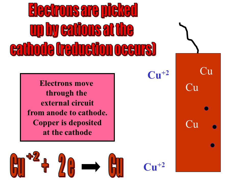 Cu +2 Cu Electrons move through the external circuit from anode to cathode.