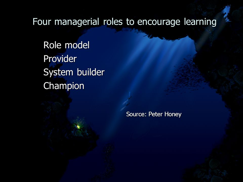 Four managerial roles to encourage learning Four managerial roles to encourage learning Role model Role model Provider Provider System builder System builder Champion Champion Source: Peter Honey Source: Peter Honey