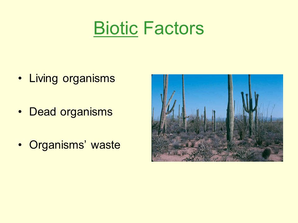 Biotic Factors Living organisms Dead organisms Organisms' waste