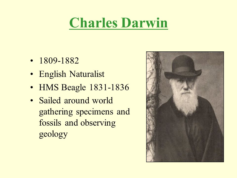 Charles Darwin 1809-1882 English Naturalist HMS Beagle 1831-1836 Sailed around world gathering specimens and fossils and observing geology