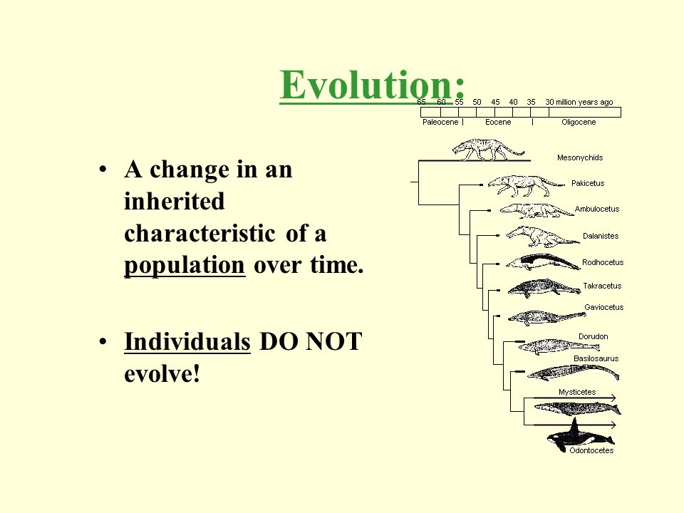 Evolution: A change in an inherited characteristic of a population over time. Individuals DO NOT evolve!