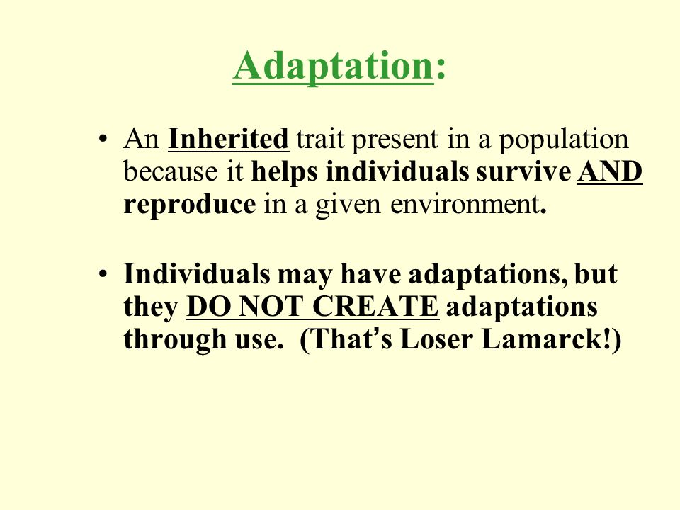 Adaptation: An Inherited trait present in a population because it helps individuals survive AND reproduce in a given environment. Individuals may have