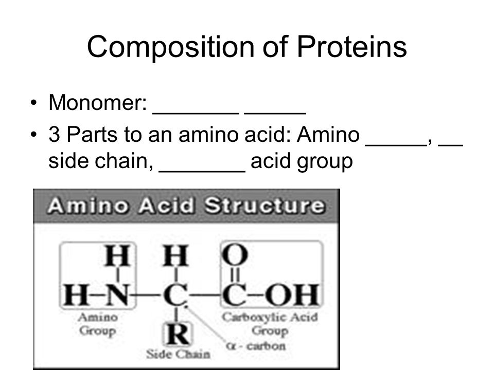 Composition of Proteins Monomer: _______ _____ 3 Parts to an amino acid: Amino _____, __ side chain, _______ acid group
