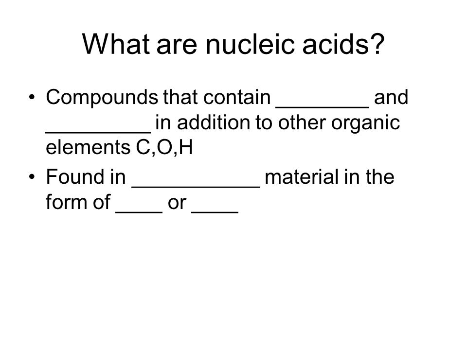 What are nucleic acids.