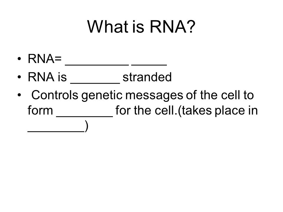 What is RNA? RNA= _________ _____ RNA is _______ stranded Controls genetic messages of the cell to form ________ for the cell.(takes place in ________