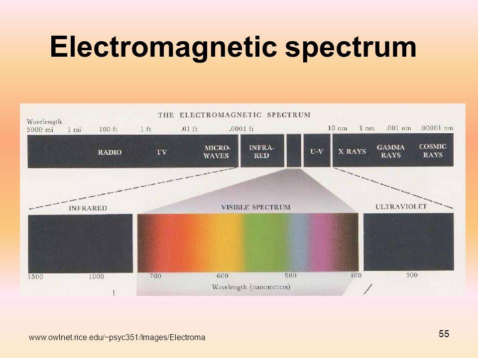 55 Electromagnetic spectrum www.owlnet.rice.edu/~psyc351/Images/Electroma
